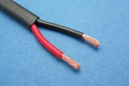 Two Core Thinwall Cable